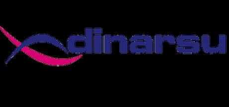 23167240652287922498Dinarsu-Logo